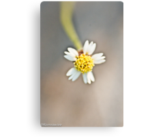 It is not a lack of love, but a lack of friendship that makes unhappy marriages. Friedrich Nietzsche... Metal Print