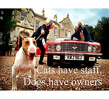 Sayings 'Dogs have Owners' Photographic Print