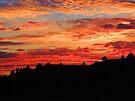 Sundown by BettyEDuncan