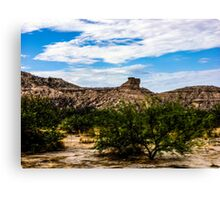 The View From My Car In Arizona 1 Canvas Print