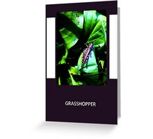Purple Grasshopper Greeting Card