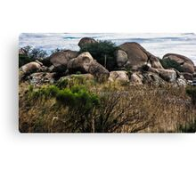 The View From My Car In Arizona 2 Canvas Print