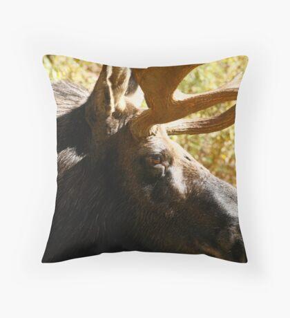 Maine Bull Moose  Throw Pillow