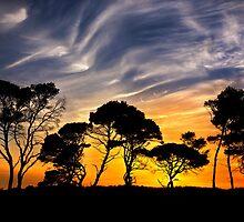 """African"" landscape in Greece. by Hercules Milas"