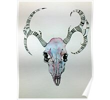 Stag Head  Poster
