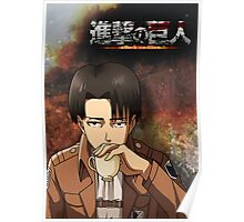 Levi Poster/Case Poster