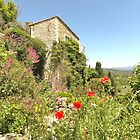 House of Gordes by Mandy Gwan