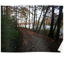 Lake path Poster