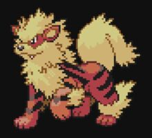 Arcanine V.2 by Flaaffy