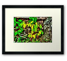 Autumn Leaves In Green And Yellow Framed Print