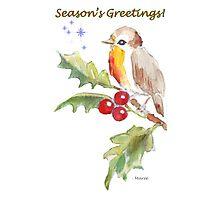 Season's Greetings! 1 Little bird (1) Photographic Print