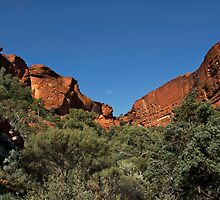 Imposing Kings Canyon by Trudi Skinn