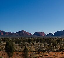 Kata Tjuta - Panoramic by Trudi Skinn