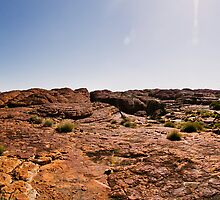 Kings Canyon Panoramic by Trudi Skinn