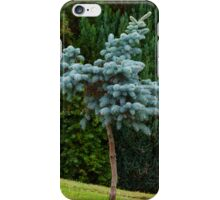 LONESOME PINE iPhone Case/Skin