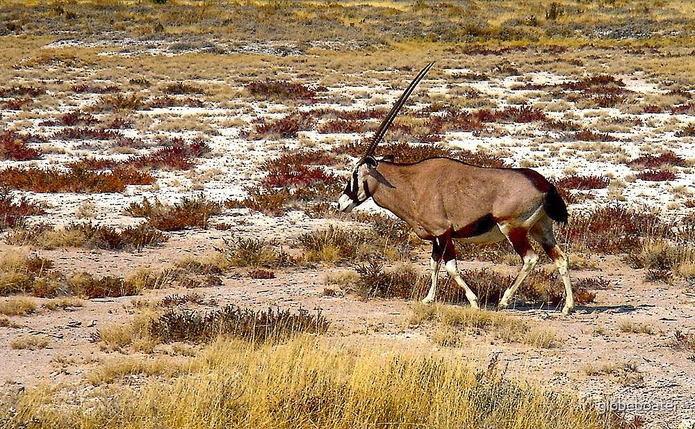 Oryx by globeboater