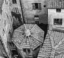 Siena roofs geometry by borjoz