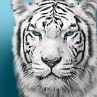 White Tiger in Blue by CarolV