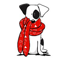 Jack Russell Terrier Mod Red Scarf Photographic Print