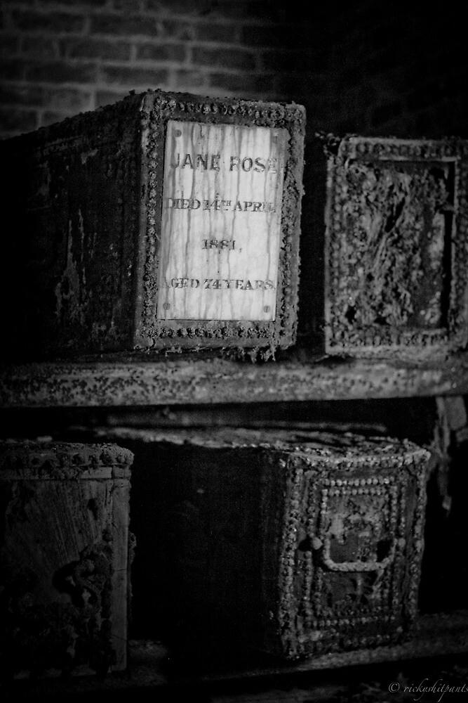 Jane Rose by Richard Pitman