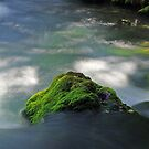 Mossy Rock in Big Spring by Brian Hendricks