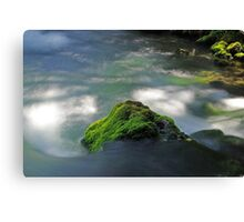 Mossy Rock in Big Spring Canvas Print