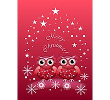 Two Owls Merry Christmas Card Photographic Print