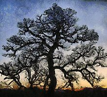 Naked Tree by Jean Gregory  Evans