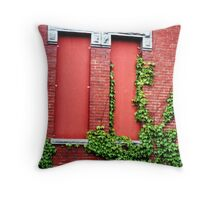 Danvers Asylum: Kirkbride Building  Throw Pillow