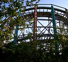Lincoln Park: Roller Coaster  by Kerri  Crau