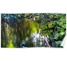 Brook Trout Hole Poster