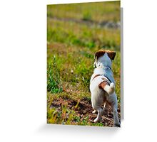 John Keeps Watch Greeting Card
