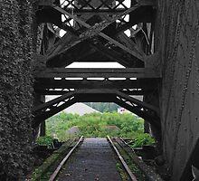 Path to Nowhere by Diamond Jackson