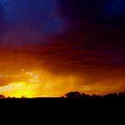 Spring sunset by kurrawinya