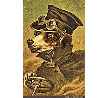 Greeting card - Vintage Dogs 2 Photographic Print