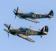 BBMF Hurricane IIc LF363 and Spitfire LF.XVIe TE311 by Colin Smedley