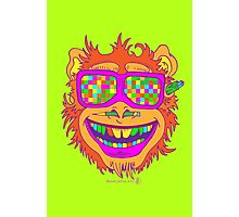 A funny monkey face colored glasses.  Photographic Print