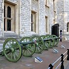 Napoleon's Cannon in the Tower of London by Daniel Carroll