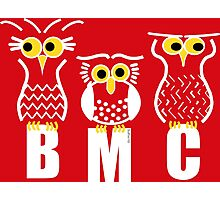 BMC Owls - Red Photographic Print