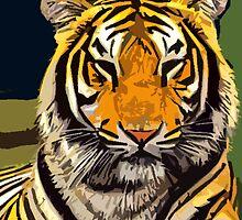 Tiger - Big cat by Rob Cox