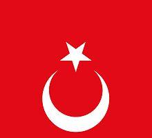 Smartphone Case - Flag of Turkey I by Mark Podger