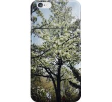 Springtime Saddness iPhone Case/Skin