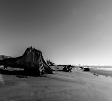 Armstrong Bay Beach by overseercorp