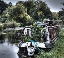 Sunflowers on the Barge by Mark Thompson