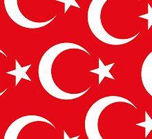 Smartphone Case - Flag of Turkey VII by Mark Podger