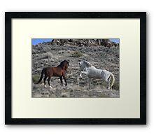 A Wild Meeting Framed Print