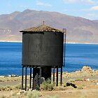 Old Water Tower at Pyramid Lake,Sutcliffe Nevada USA by Anthony & Nancy  Leake