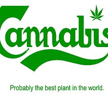 Cannabis.  Probably the best plant in the world. by mouseman