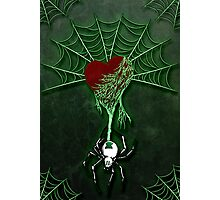 Black Widow (Green) Photographic Print