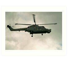 Navy Lynx  Art Print